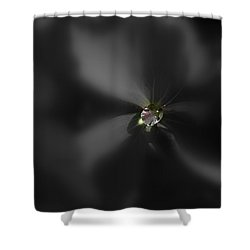 Dew Bead Shower Curtain