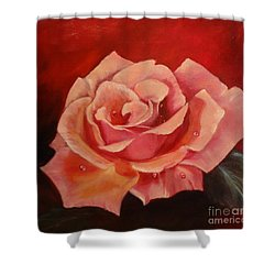 Shower Curtain featuring the painting Dew Drops On Pink Rose by Jenny Lee