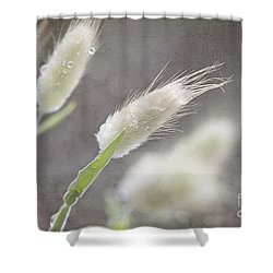 Dew Kissed Morning Shower Curtain by Linda Lees