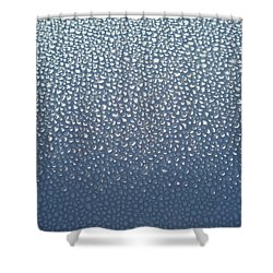 Dewey Hood Shower Curtain
