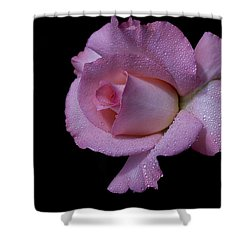 Shower Curtain featuring the photograph Dewy by Doug Norkum