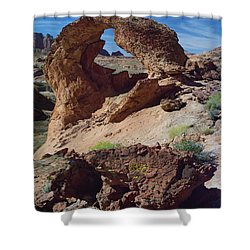 Diagenetic Arch Shower Curtain