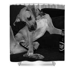Diesel In Black And White Shower Curtain by Rob Hans