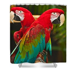 Different Directions Shower Curtain by Sabine Edrissi