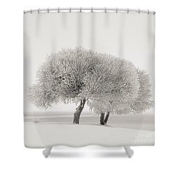 Different Season Shower Curtain