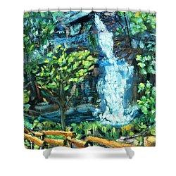 Dingman Falls Eastern Pennsylvania Shower Curtain