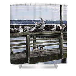 Dinner At The Marina Shower Curtain by Cathy Anderson