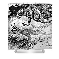 Dinosaurs Fighting Shower Curtain by Science Source