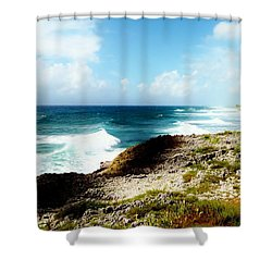 Diorama Shower Curtain