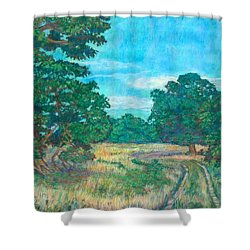 Shower Curtain featuring the painting Dirt Road Near Rock Castle Gorge by Kendall Kessler