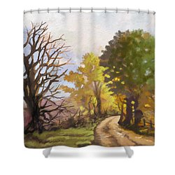Shower Curtain featuring the painting Dirt Road To Some Place by Anthony Mwangi