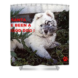 Dirty Dog Christmas Card Shower Curtain