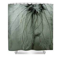 Discarded Dreams Shower Curtain