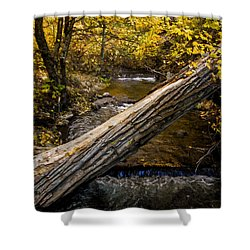Discover Our Strengths Shower Curtain by Jordan Blackstone