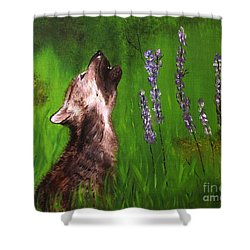 Discovering His Voice Shower Curtain by Bev Conover