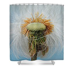 Disheveled Shower Curtain by Frozen in Time Fine Art Photography