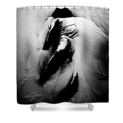 Disintegration Shower Curtain by Jessica Shelton