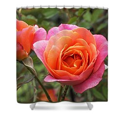 Disneyland Roses Shower Curtain by Rona Black