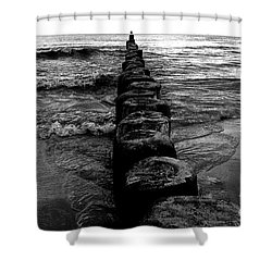 Distant Seagull Baltic Beach Shower Curtain