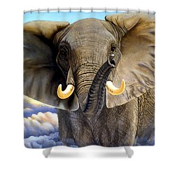Da108 Distant Thunder By Daniel Adams Shower Curtain
