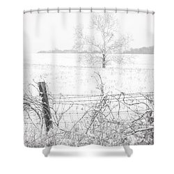 Distant Tree Shower Curtain