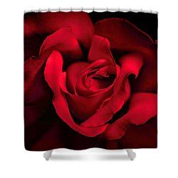 Shower Curtain featuring the photograph Haunting Red Rose Flower by Jennie Marie Schell