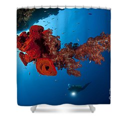 Diver Looks On At A Bright Red Soft Shower Curtain