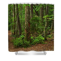 Diverted Paths Shower Curtain