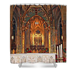 Divine Arches   Shower Curtain