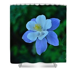 Divine Intricacy Shower Curtain