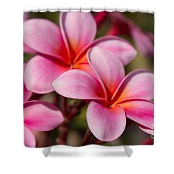 Divine Joy Shower Curtain by Sharon Mau