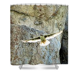Diving Falcon Shower Curtain