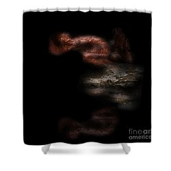 Shower Curtain featuring the digital art Diving In by Nicholas Burningham