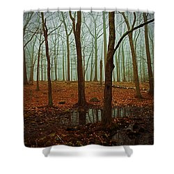 Do We Dare Go Into The Woods Shower Curtain by Karol Livote