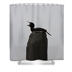 Shower Curtain featuring the photograph Do You Hear Me? by Vadim Levin