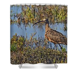 Shower Curtain featuring the photograph Do You Like My Stylish Beak by Gary Holmes