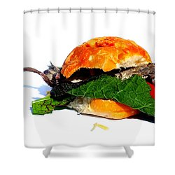 Do You Want Flies With That? Shower Curtain