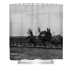 Dock In Decline Shower Curtain