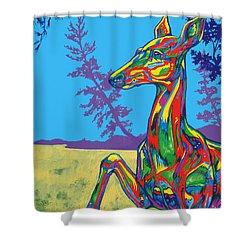 Doe Shower Curtain by Derrick Higgins