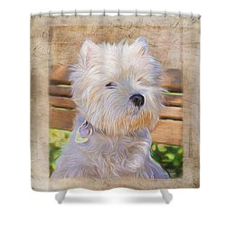 Dog Art - Just One Look Shower Curtain