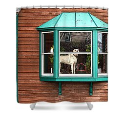 Dog In Window Shower Curtain