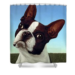 Dog-nature 4 Shower Curtain