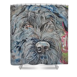 Shower Curtain featuring the painting Dog Of Flanders The Bouvier by PainterArtist FIN