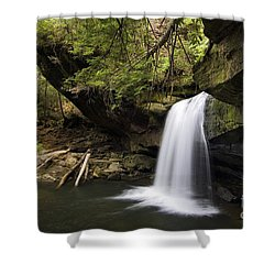 Dog Slaughter Falls - D002756 Shower Curtain by Daniel Dempster