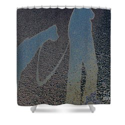 Dog Walks 1 Shower Curtain