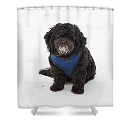 Doggone Good Beach Fun Shower Curtain