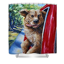 Dog...gone Happy Shower Curtain