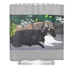Dogs Daisy And Buttons Shower Curtain