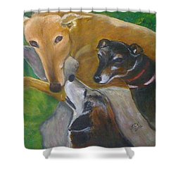 Dogs Resting Shower Curtain