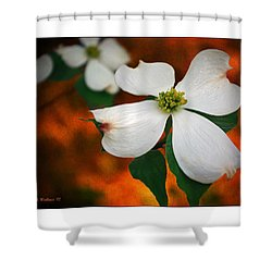 Dogwood Blossom Shower Curtain by Brian Wallace